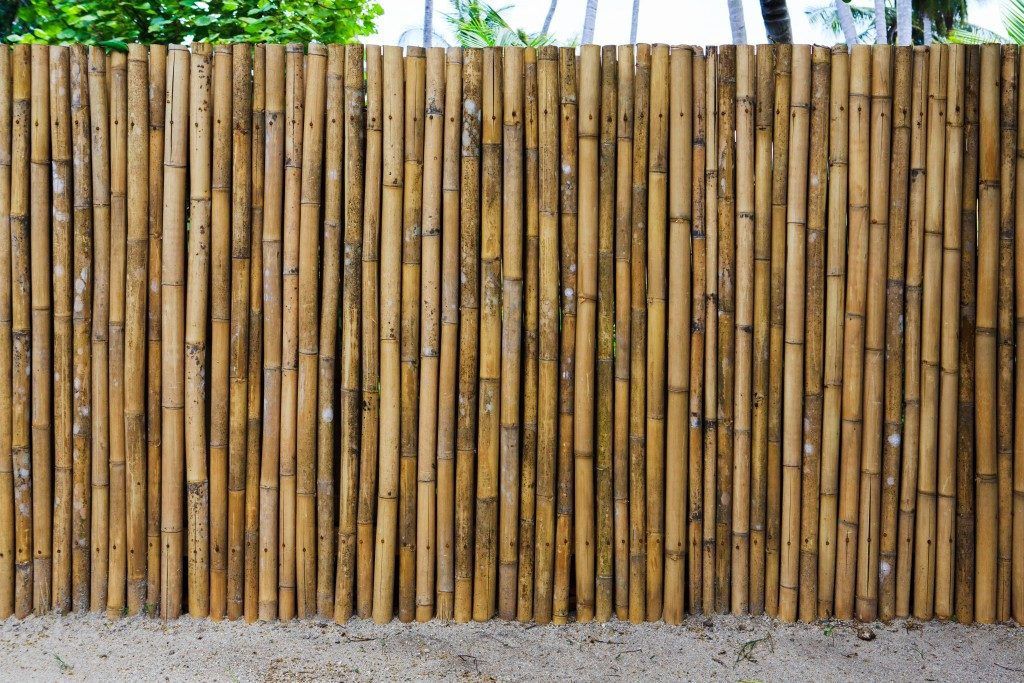 bamboo fence of a home