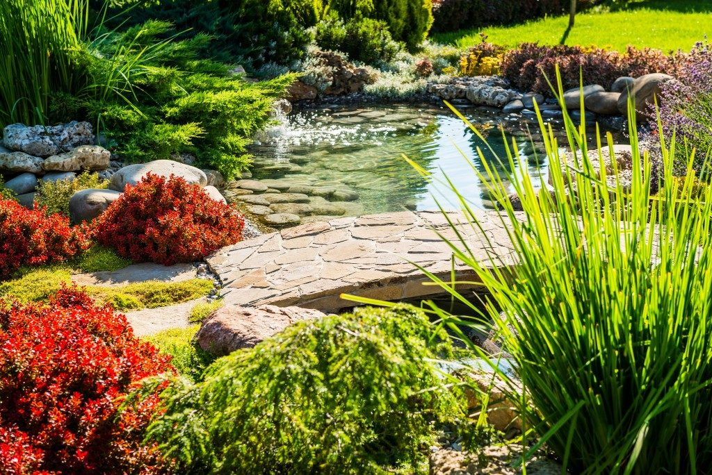 walkway over a pond