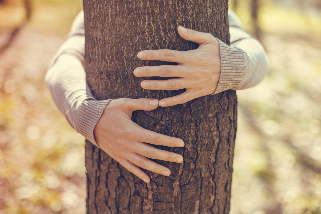 Person hugging the tree trunk